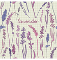 Lavender Pattern Background vector image
