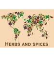 Herbs and spices flat icons in world map shape vector image vector image