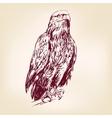 Eagle - vector image