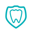medical dental care vector image