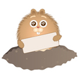 little groundhog with sign vector image