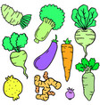 fresh vegetable set of doodles vector image