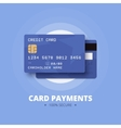 Card payments vector image