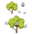 Cartoon tree with green foliage vector image