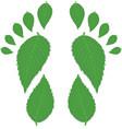 Green footprint vector image
