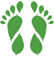 Green footprint vector image