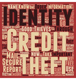 Identity Theft Stop It Now text background vector image