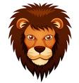 Lion face vector image