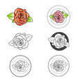 rose flower different logo design set vector image