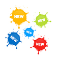 Colorful Stains Splashes With New Title vector image vector image