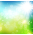 Summer or spring background vector image