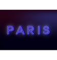 Neon Paris Neon Paris sign design for your vector image