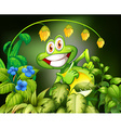 Frog and flower vector image vector image