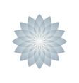 lotus plant symbol vector image
