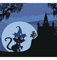 black witch cat vector image