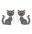 cute cartoon black cat on floral lavender vector image