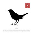 black silhouette of a japanese robin vector image