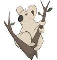 Koala bear on a tree Cartoon vector image