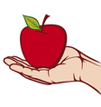 apple in the hand vector image vector image