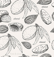 Seamless pattern with almonds on white background vector image