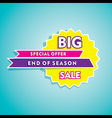 big end of season sale banner design vector image
