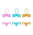 set of bikini vector image