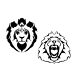 Lion heads on a white background vector image