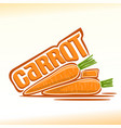carrot still life vector image