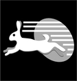 speed white rabbit vector image