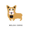 funny welsh corgi dog character in cartoon style vector image