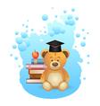 School teddy bear vector image