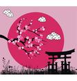 Japanese Sakura blossom vector image