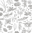 Seamless pattern with spices and herbs on a white vector image