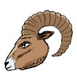 mountain goat vector image