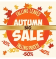Big autumn sale poster vector image