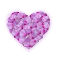 Pink heart of petals on white background vector image vector image
