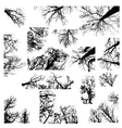Black trees silhouettes vector image