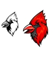 Cardinal birds vector image vector image