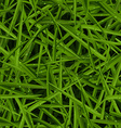 Green lawn texture with water drops in a seamless vector image