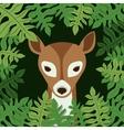 animal wildlife design vector image