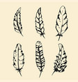hand drawn feather set outline silhouette feather vector image