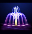lit night fountain realistic vector image