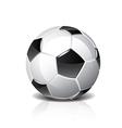 object soccer ball vector image