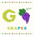 alphabet for children letter g and grapes vector image