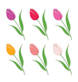 set of beautiful colour flowers vector image