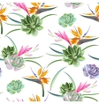 Exotic flowers and succulents seamless vector image