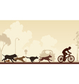 Dogs chasing cyclist vector image