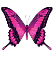 Beautiful pink butterfly vector