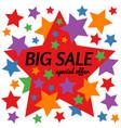big sale special offer star banner vector image