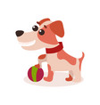 jack russell terrier character playing with ball vector image